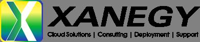 Xanegy Logo