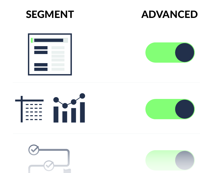 Advanced Segments