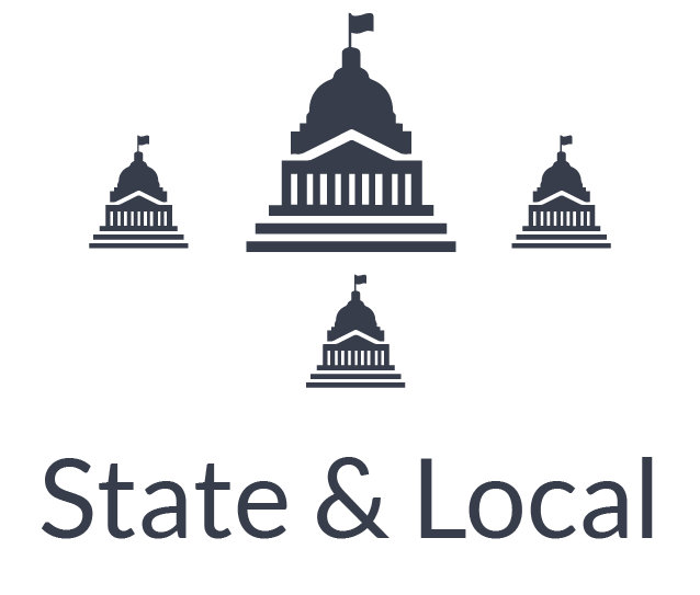 State & Local Government Sector
